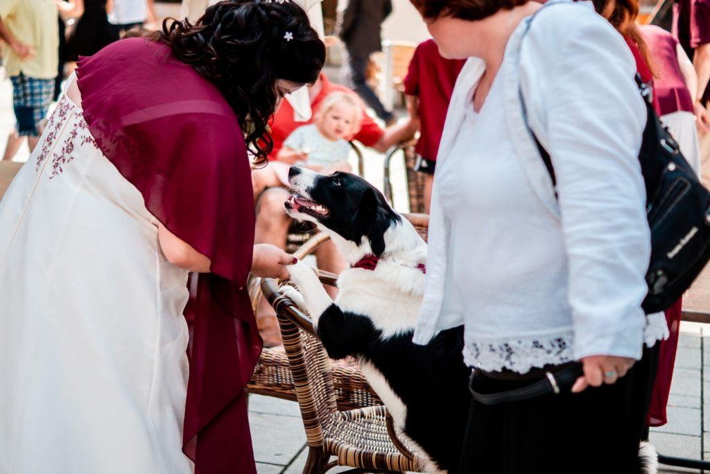 Braut mit Hund