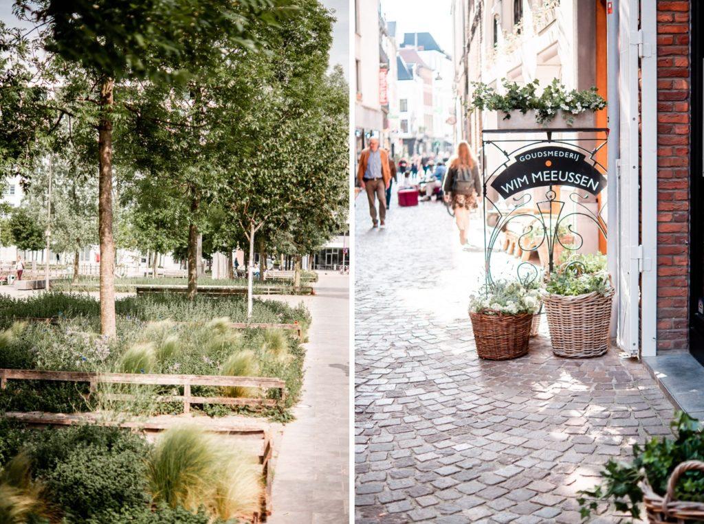 Garten in Antwerpen